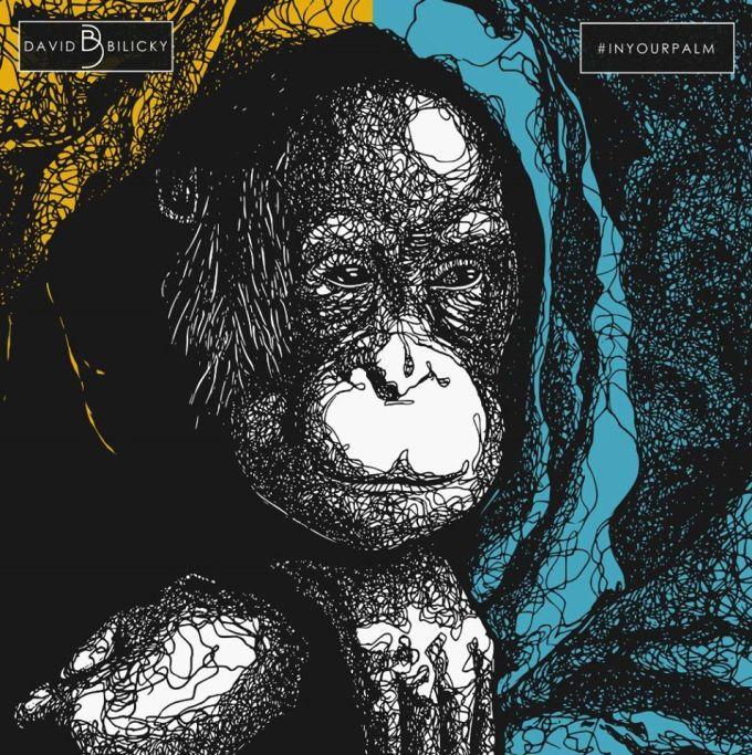 orangutan od dawida